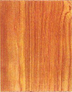 Holzlexikon Edelkastanie