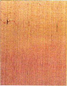 Holzlexikon Erle