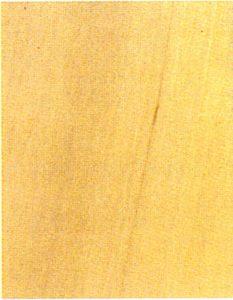 Holzlexikon Hainbuche