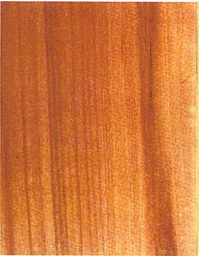 Holzlexikon Kirschbaum