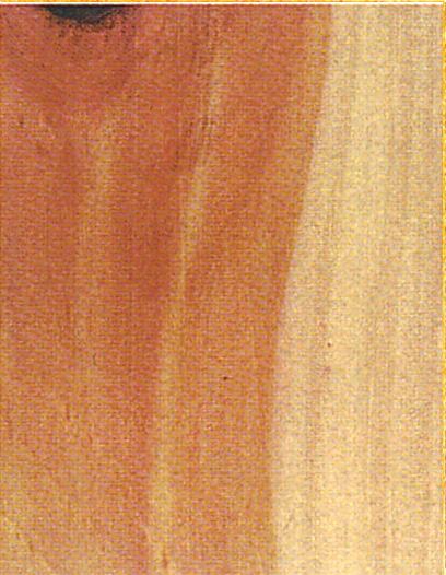 Holzlexikon Zirbe